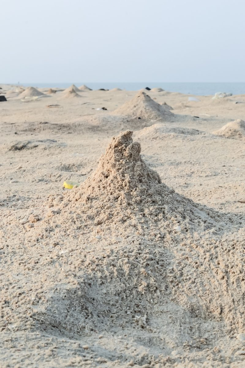 Mounds made by sand crabs at Al Qatan Tourism Village
