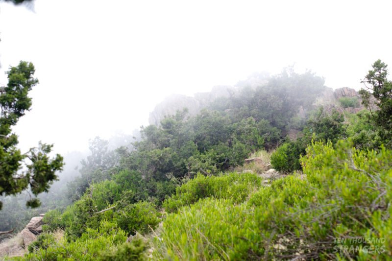 Foggy mountains in Jabal Sawda, Abha