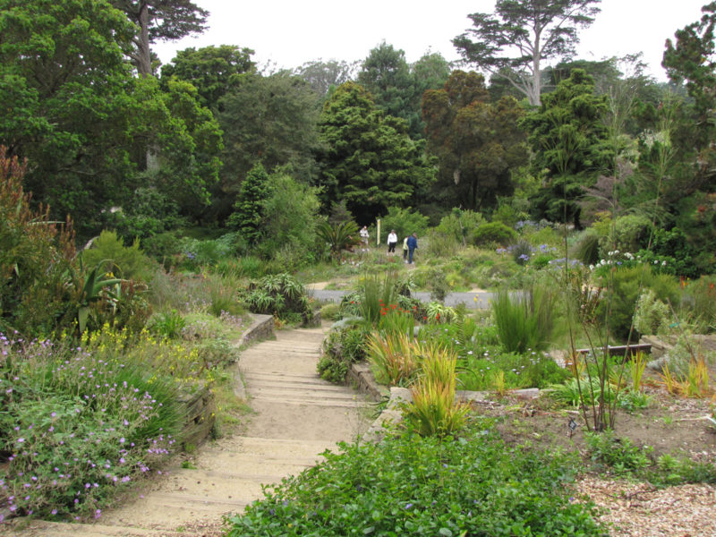 San Francisco Botanical Gardens, Golden Gate Park