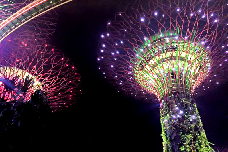 Supertree Grove Garden Rhapsody - Free Singapore Attractions